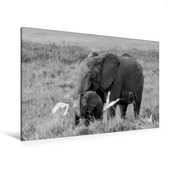 Premium Textil-Leinwand 120 cm x 80 cm quer, Ein Motiv aus dem Kalender Emotionale Momente: Elefanten in black and white | Wandbild, Bild auf Keilrahmen, Fertigbild auf echter Leinwand, Leinwanddruck - Coverbild