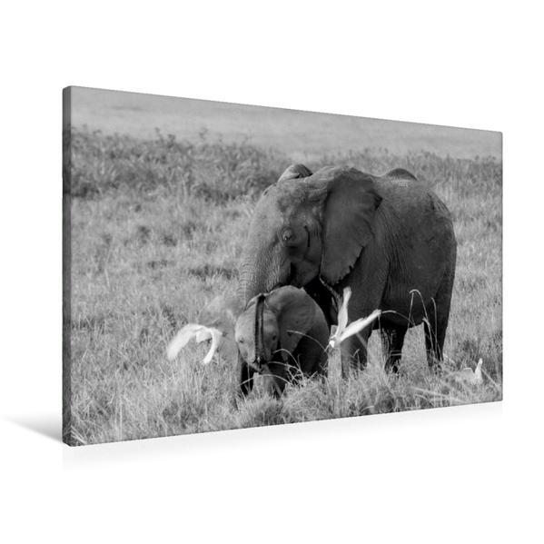 Premium Textil-Leinwand 90 cm x 60 cm quer, Ein Motiv aus dem Kalender Emotionale Momente: Elefanten in black and white   Wandbild, Bild auf Keilrahmen, Fertigbild auf echter Leinwand, Leinwanddruck - Coverbild