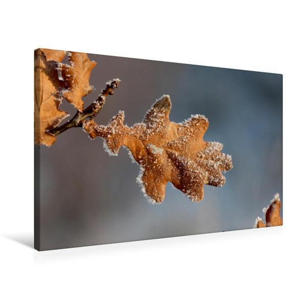 Premium Textil-Leinwand 75 cm x 50 cm quer, Ein Motiv aus dem Kalender Winterimpressionen | Wandbild, Bild auf Keilrahmen, Fertigbild auf echter Leinwand, Leinwanddruck - Coverbild