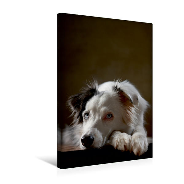 Premium Textil-Leinwand 30 cm x 45 cm hoch, Angel, 7 Jahre | Wandbild, Bild auf Keilrahmen, Fertigbild auf echter Leinwand, Leinwanddruck - Coverbild