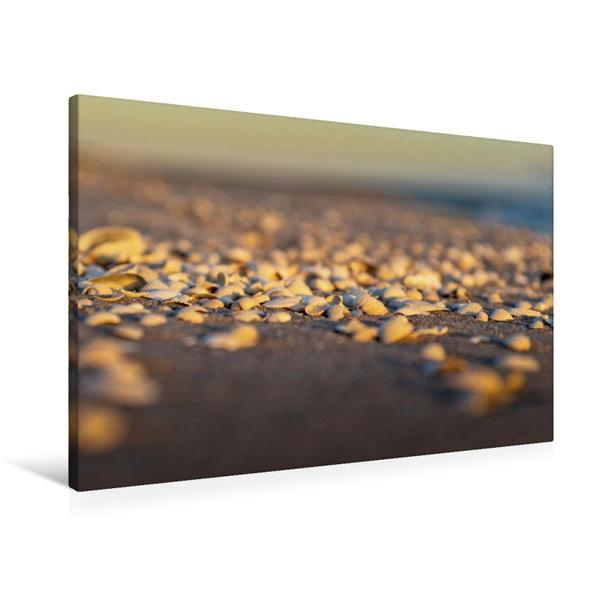 Premium Textil-Leinwand 90 cm x 60 cm quer, Ein Motiv aus dem Kalender Am Meeressaum der Ostsee | Wandbild, Bild auf Keilrahmen, Fertigbild auf echter Leinwand, Leinwanddruck - Coverbild