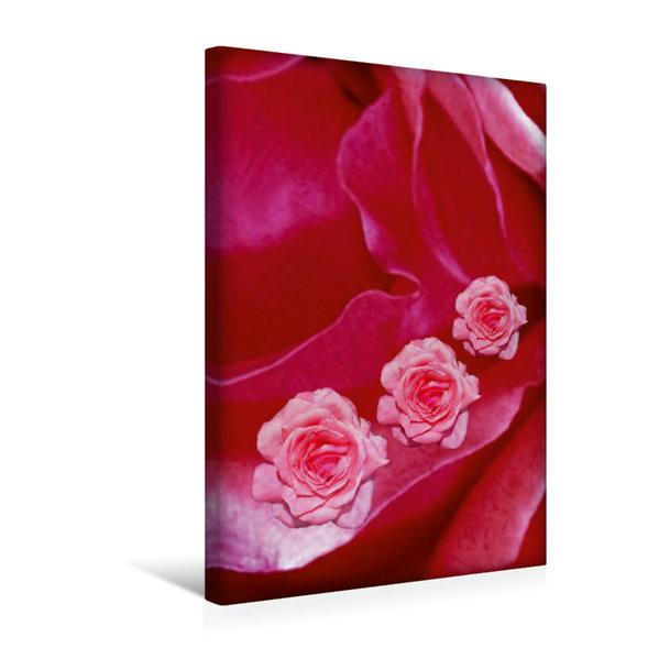Premium Textil-Leinwand 30 cm x 45 cm hoch, Ein Motiv aus dem Kalender Floral mit Charme | Wandbild, Bild auf Keilrahmen, Fertigbild auf echter Leinwand, Leinwanddruck - Coverbild