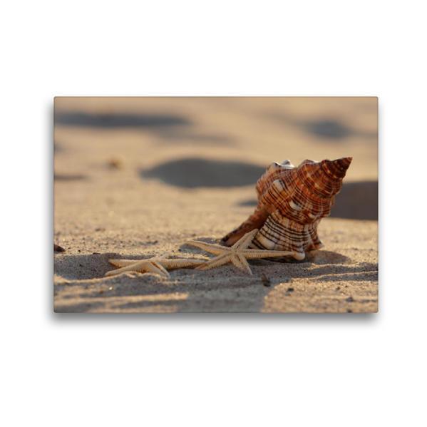 Premium Textil-Leinwand 45 cm x 30 cm quer, Sommer Feeling   Wandbild, Bild auf Keilrahmen, Fertigbild auf echter Leinwand, Leinwanddruck - Coverbild