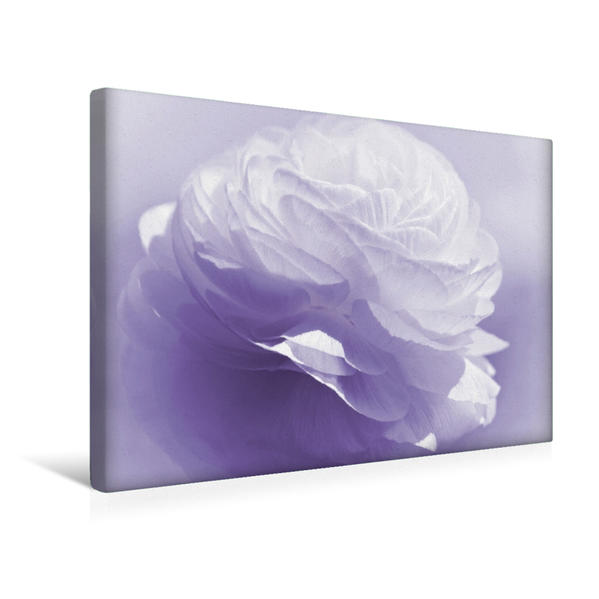 Premium Textil-Leinwand 45 cm x 30 cm quer, Ein Motiv aus dem Kalender Naturschönheiten | Wandbild, Bild auf Keilrahmen, Fertigbild auf echter Leinwand, Leinwanddruck - Coverbild