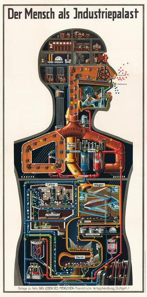 Der Mensch als Industriepalast von Dr. Fritz Kahn - Coverbild