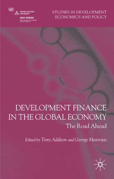 Development Finance in the Global Economy - Coverbild
