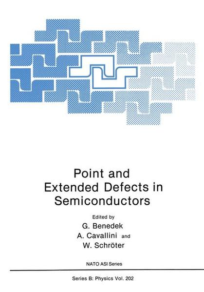 Point and Extended Defects in Semiconductors - Coverbild