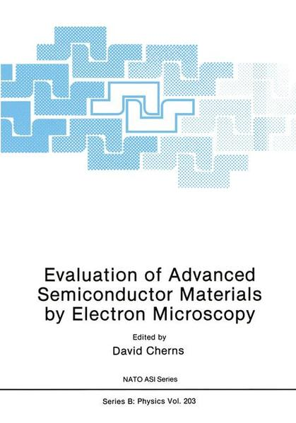 Evaluation of Advanced Semiconductor Materials by Electron Microscopy - Coverbild