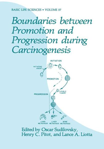 Boundaries between Promotion and Progression during Carcinogenesis - Coverbild