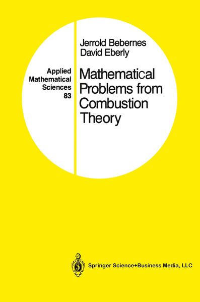 Mathematical Problems from Combustion Theory - Coverbild
