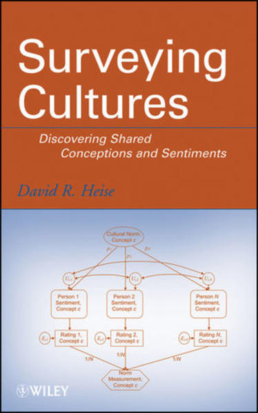 Surveying Cultures - Coverbild