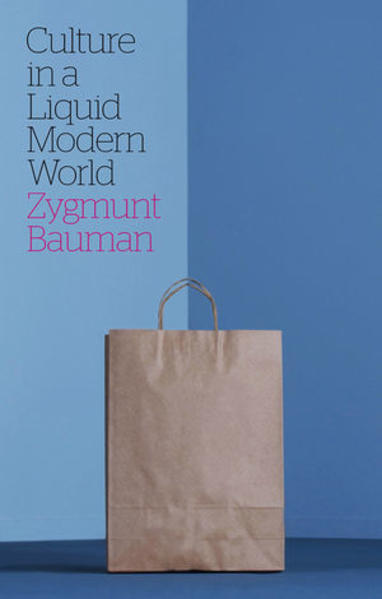 Culture in a Liquid Modern World - Coverbild