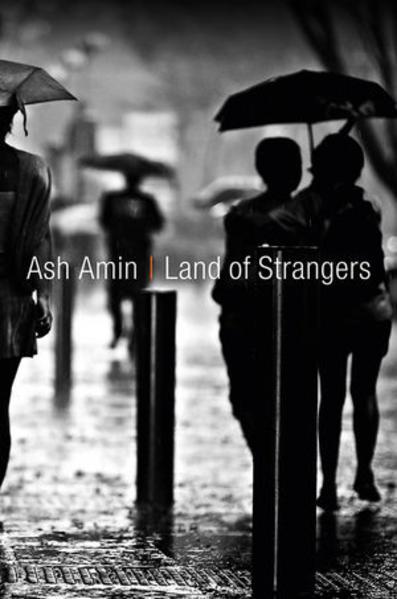 Kostenloser Download Land of Strangers Epub