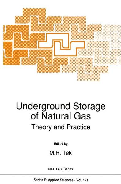 Underground Storage of Natural Gas - Coverbild