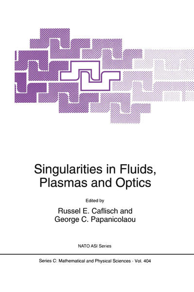 Singularities in Fluids, Plasmas and Optics - Coverbild