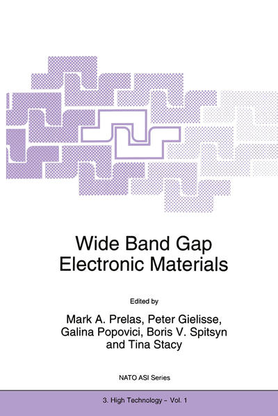 Wide Band Gap Electronic Materials - Coverbild