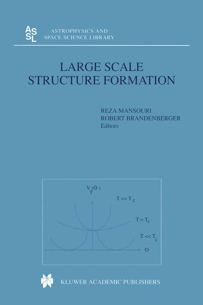 Large Scale Structure Formation - Coverbild