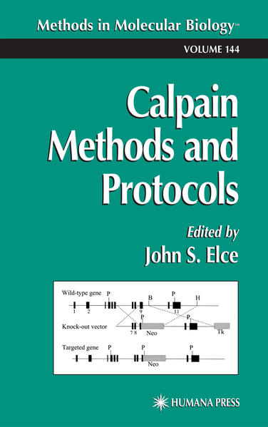 Calpain Methods and Protocols - Coverbild