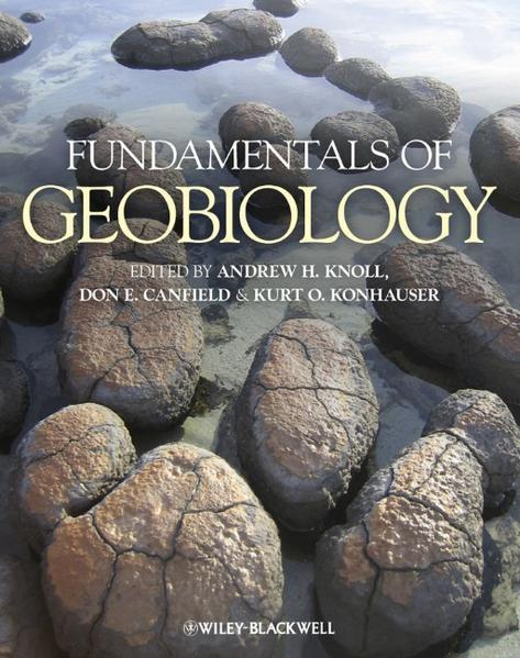 Download Fundamentals of Geobiology PDF Kostenlos