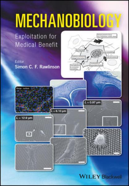 Mechanobiology - Coverbild