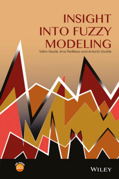 Insight into Fuzzy Modeling - Coverbild