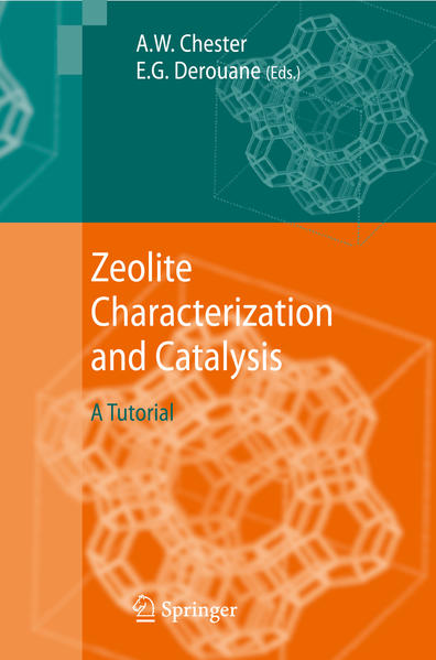 Zeolite Characterization and Catalysis - Coverbild