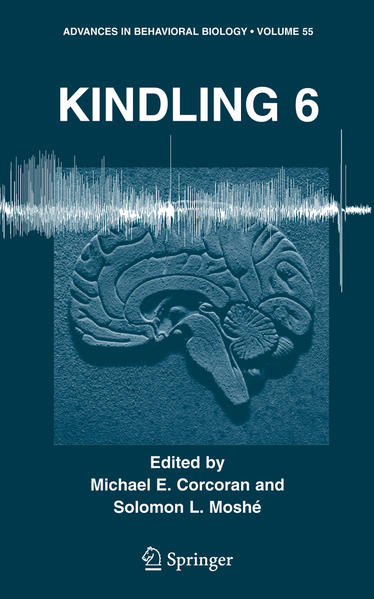 Kindling 6 - Coverbild