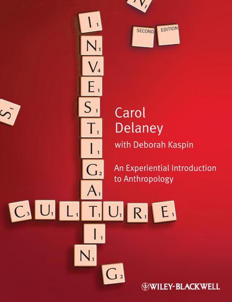 Investigating Culture - Coverbild