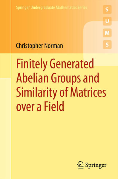 Finitely Generated Abelian Groups and Similarity of Matrices over a Field - Coverbild