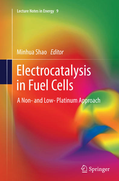 Electrocatalysis in Fuel Cells - Coverbild
