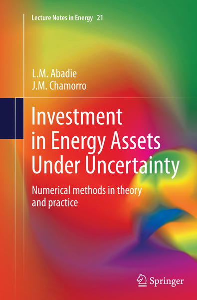 Investment in Energy Assets Under Uncertainty - Coverbild