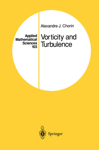 Vorticity and Turbulence - Coverbild