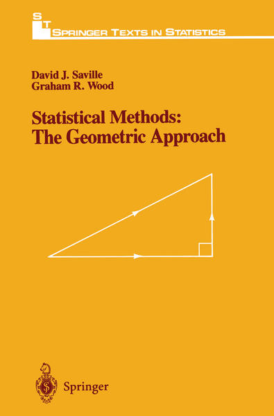 Statistical Methods: The Geometric Approach - Coverbild