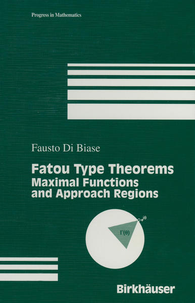Fatou Type Theorems - Coverbild
