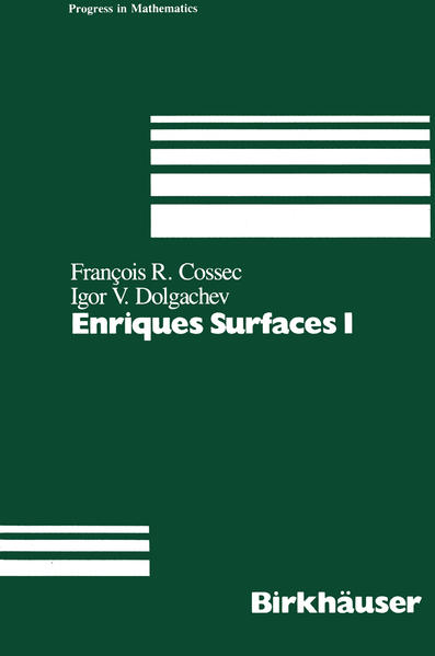 Enriques Surfaces I - Coverbild