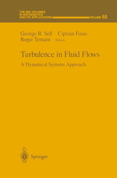 Turbulence in Fluid Flows - Coverbild