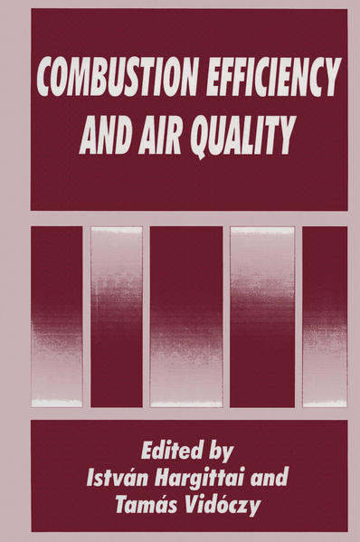 Combustion Efficiency and Air Quality - Coverbild