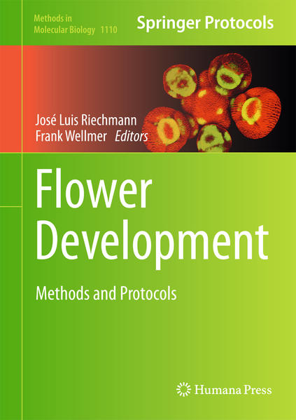 Flower Development - Coverbild