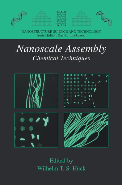 Nanoscale Assembly - Coverbild