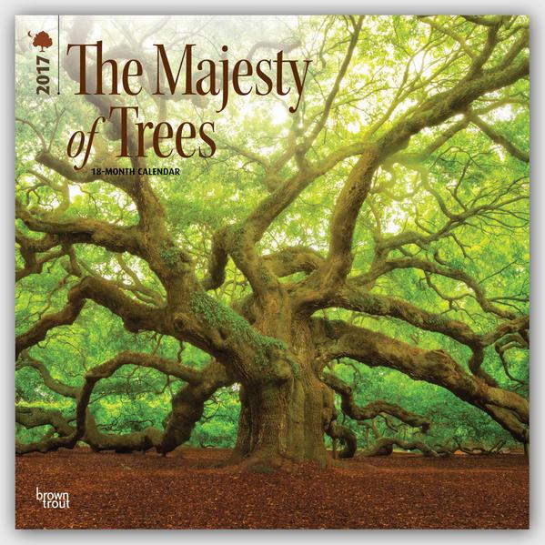 The Majesty of Trees - Majestätische Bäume 2017 - 18-Monatskalender - Coverbild