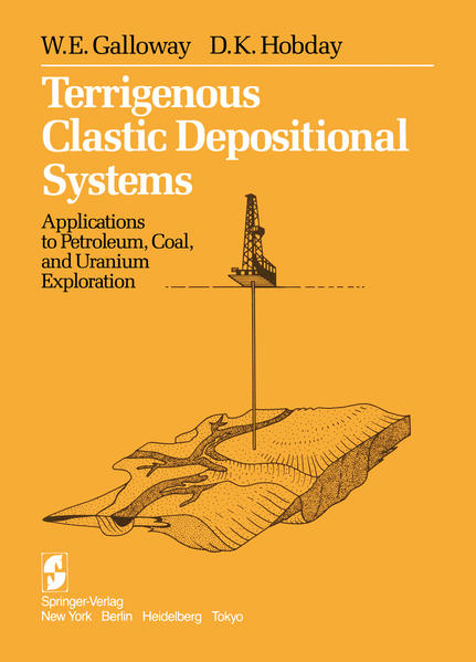 Terrigenous Clastic Depositional Systems - Coverbild