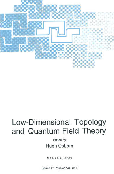 Low-Dimensional Topology and Quantum Field Theory - Coverbild