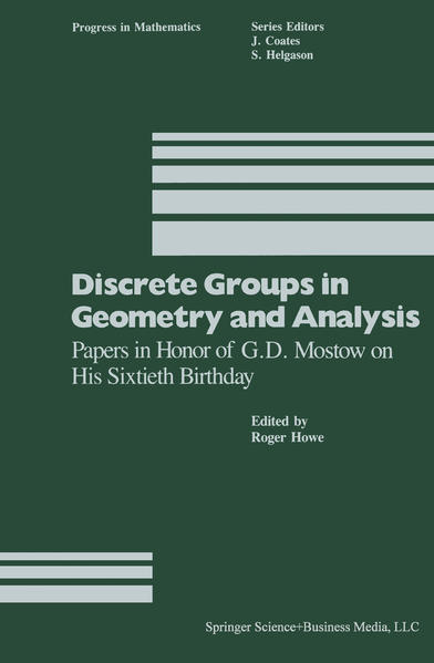 Discrete Groups in Geometry and Analysis - Coverbild