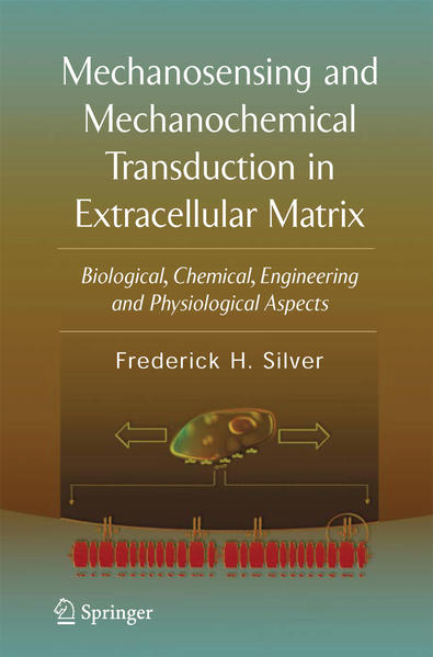Mechanosensing and Mechanochemical Transduction in Extracellular Matrix - Coverbild