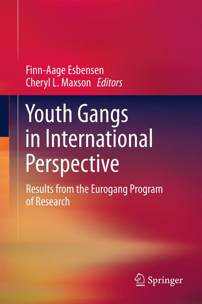 Youth Gangs in International Perspective - Coverbild