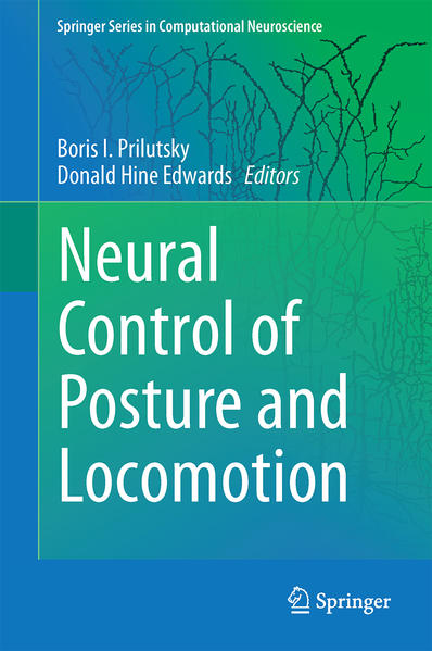 Neuromechanical Modeling of Posture and Locomotion - Coverbild