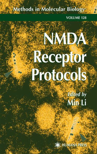 NMDA Receptor Protocols - Coverbild