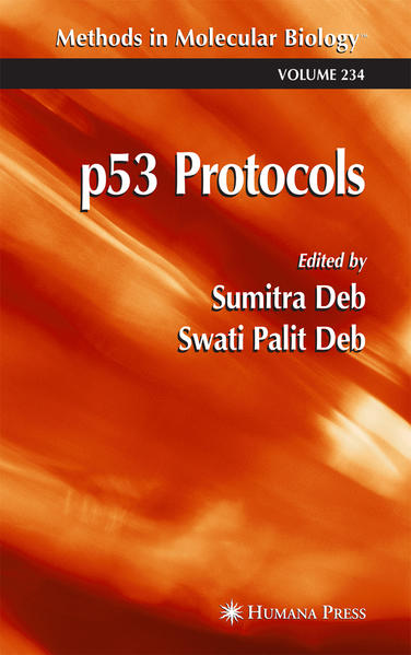 p53 Protocols - Coverbild