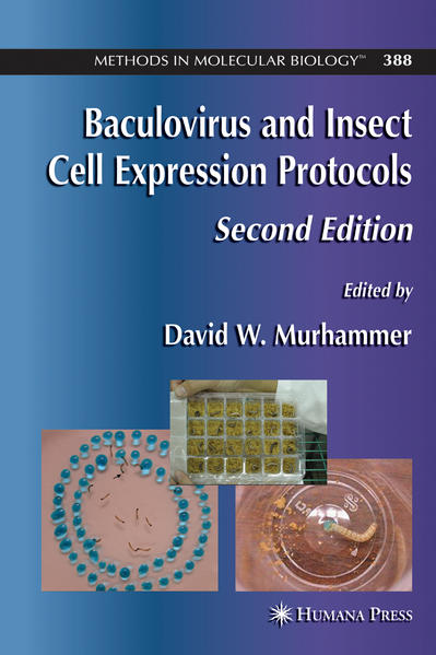 Baculovirus and Insect Cell Expression Protocols - Coverbild
