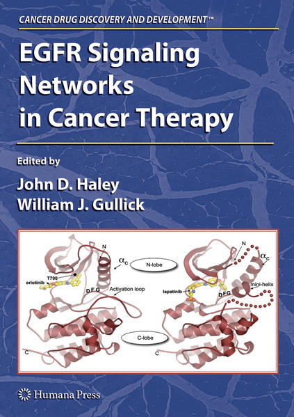 EGFR Signaling Networks in Cancer Therapy - Coverbild